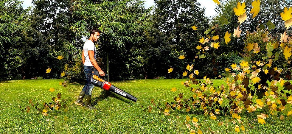 Best Leaf Blower Reviews
