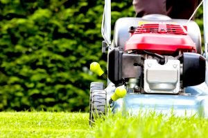 Best Self Propelled Lawn Mower Reviews